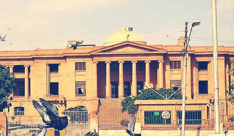 High Court of Sindh  High Court of Sindh image| IP Lawyers| Declaration for Holidays | Legal Aid| Pigeons| Pakistan Flag| Dani & Dani