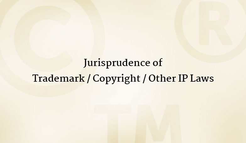 IP Symbols| Copyright Protection| Trademark Registration| IP Lawyers| Litigation & Enforcement Attorney| Patents| Dani & Dani