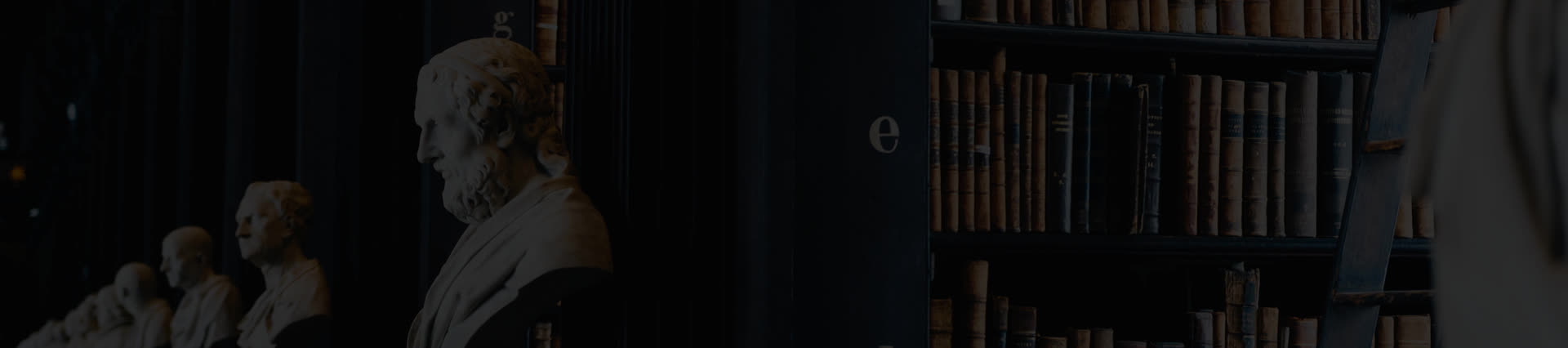 Law Library| White Statue| Practice Area| Experienced Attorneys| Intellectual Property Litigation Lawyers| Dani & Dani
